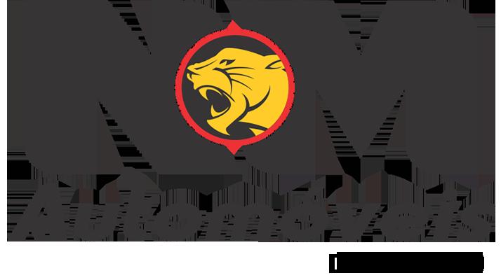 NM Automóveis